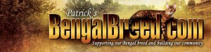 BoydsBengals