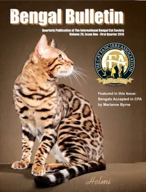 BoydsBengals Breaking Bad - The Bengal Bulletin 2016